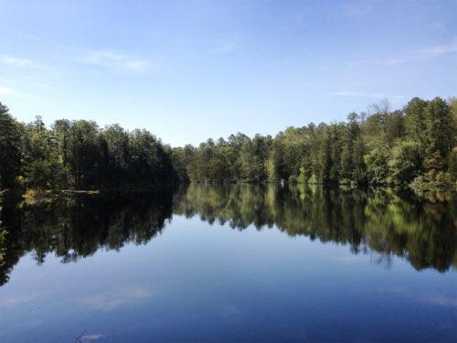 Brendan Byrne State Forest-4