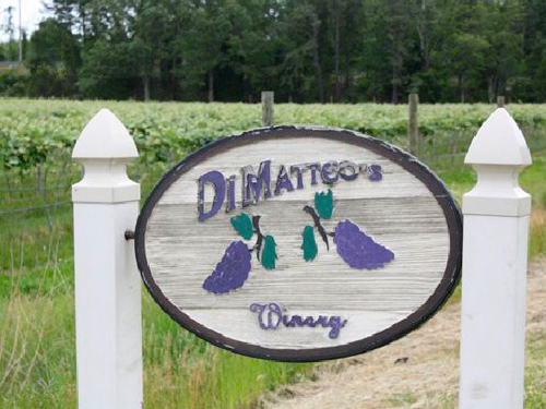 dimatteo-vineyards-2
