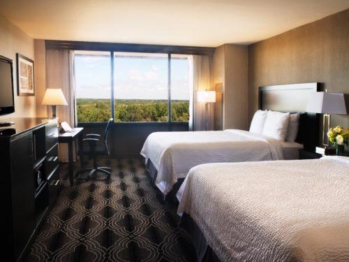 HotelML_DoubleCarpet