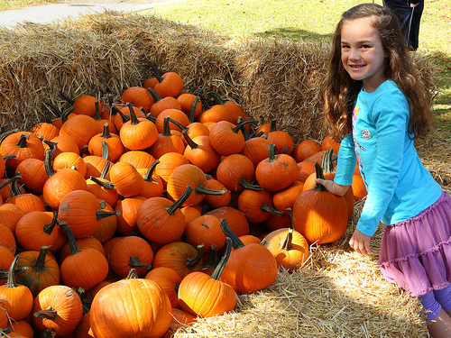 10.1.17-pumpkin